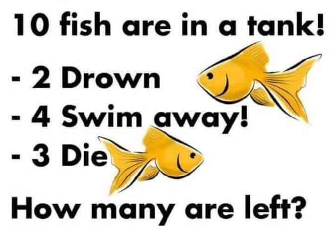 Here Is The Answer To The 10 Fish Are In The Tank Riddle