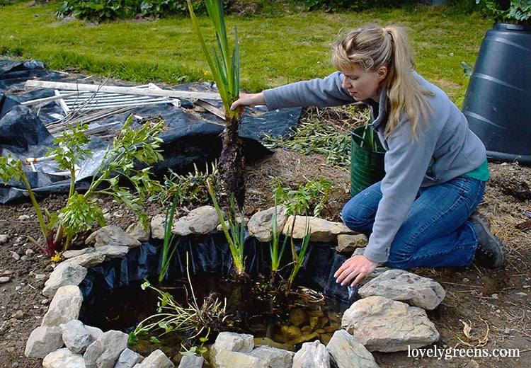 Spice Up Your Backyard & Garden With This Small DIY Wildlife Pond! •  AwesomeJelly.com - Spice Up Your Backyard & Garden With This Small DIY Wildlife Pond
