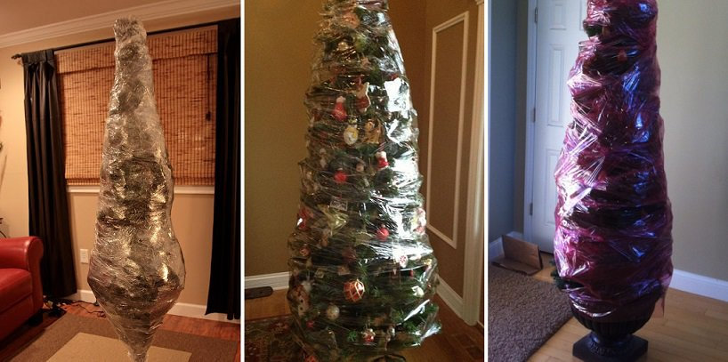 After Christmas Wrap Your Entire Tree With Saran Wrap For
