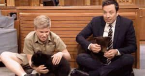 Jimmy Fallon Bears