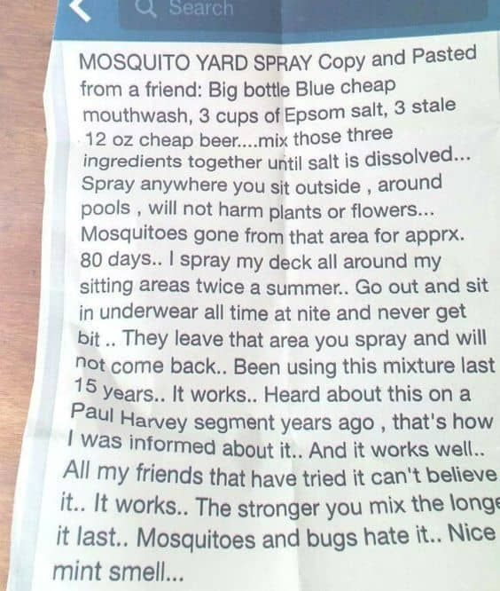 How To Make Your Own 3-Ingredient Mosquito Yard Spray That