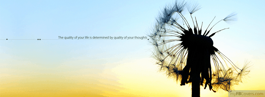 50 Of The Best Quote Facebook Cover Photos Awesomejellycom